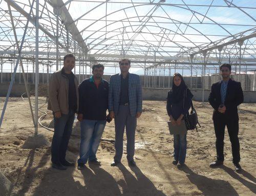پروژه شرکت توسعه شماره 9 – جناب آقای مهندس جلیلی